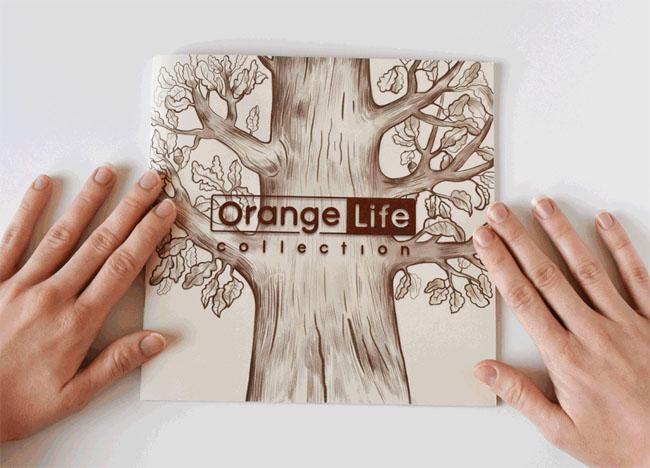 Orange Life玩具公司宣传册设计